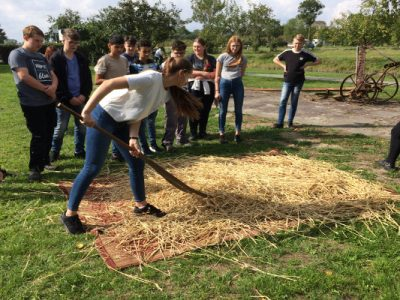 Müller1900: Die Spreu vom Weizen trennen
