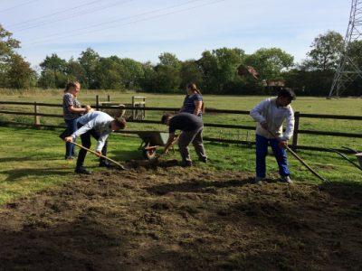 Müller1900: Der zweite harte Tag – Arbeit auf dem Feld