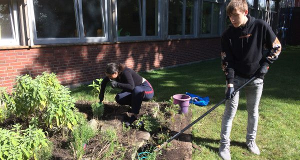 Garten- und Landschaftsbau ganz praktisch